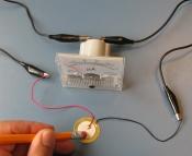 electricsqueeze